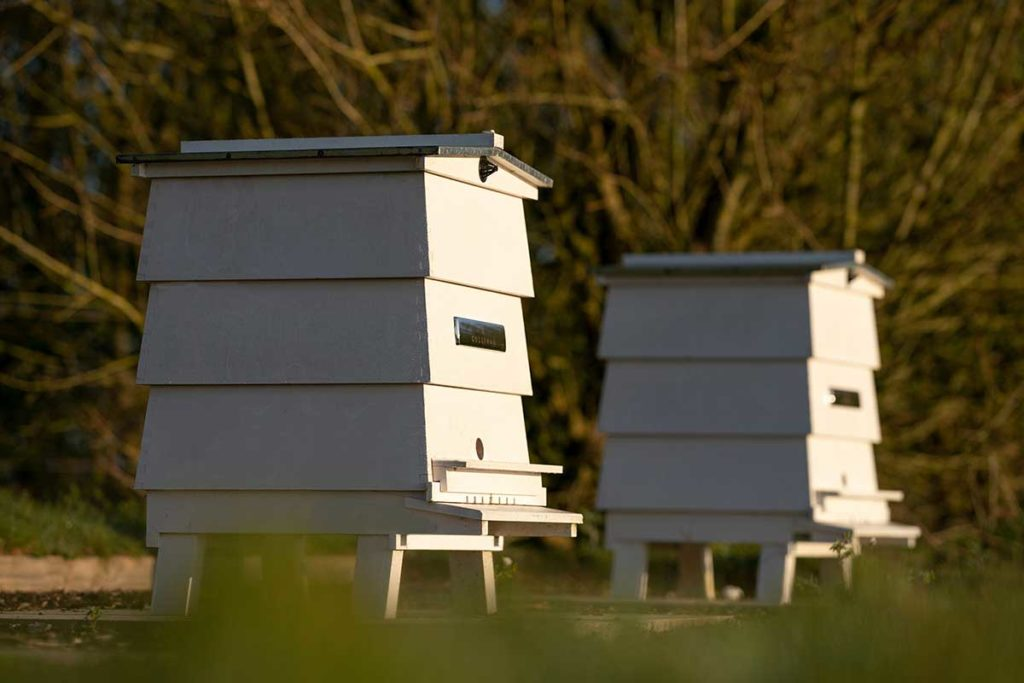 Rolls-Royce Bee Apiary Record Production