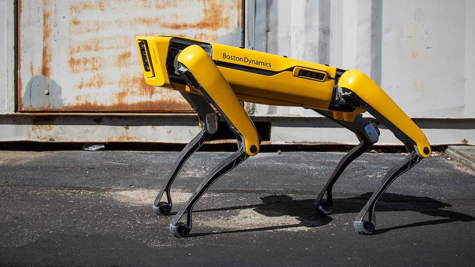 Boston Dynamics Spot Robot Sale