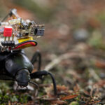"Researchers At University Of Washington Developed An ""Action Cam"" For Insects"