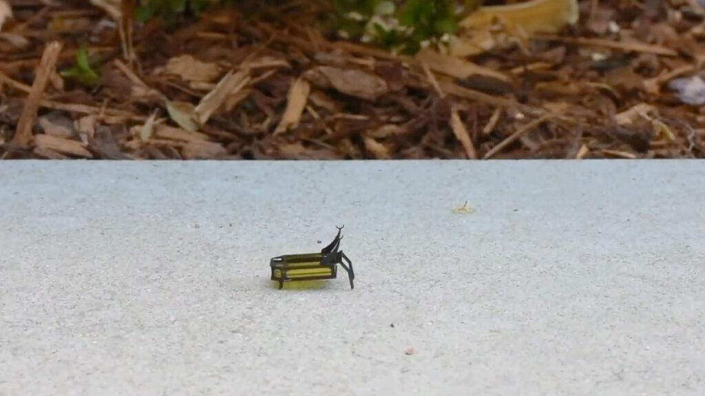 88-milligram Insect-scale Autonomous Robot