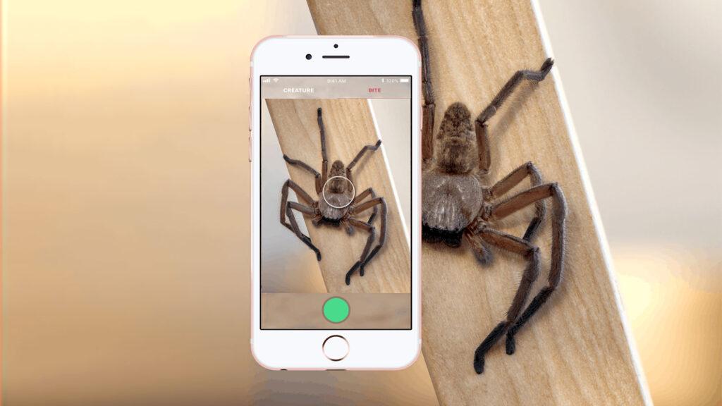 Critterpedia Critter Identification Mobile App