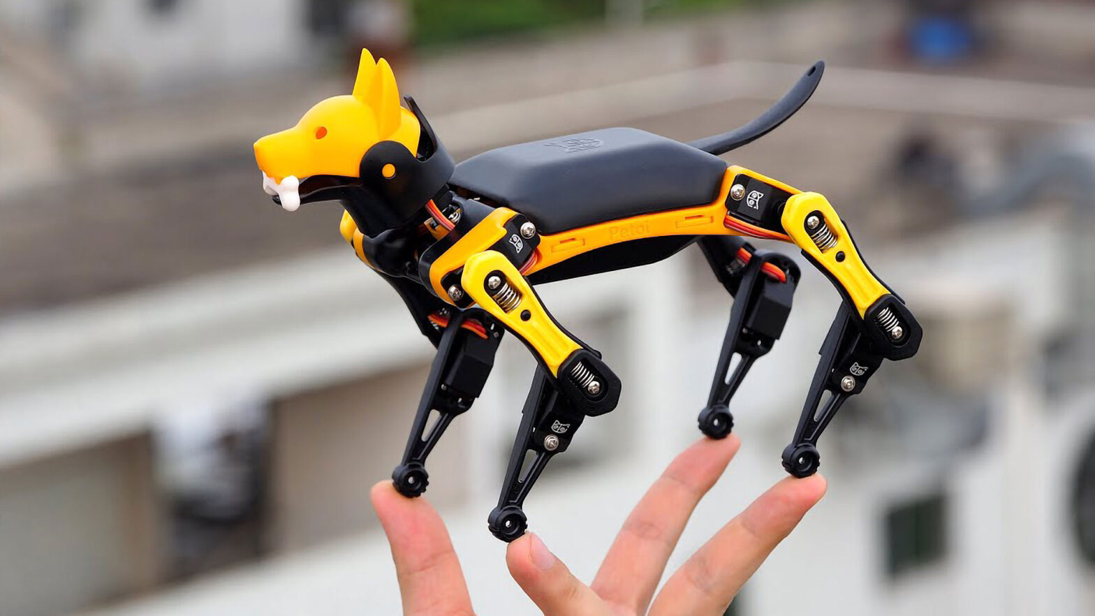 Petoi Bittle Palm-sized Robot Dog