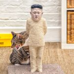 Your Hate For Kim Jong Un Must Be Very Deep To Be Wanting This Cat Scratching Post