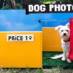 Simone Giertz Built A Dog Selfie Booth Using LEGO And LEGO Mindstorms