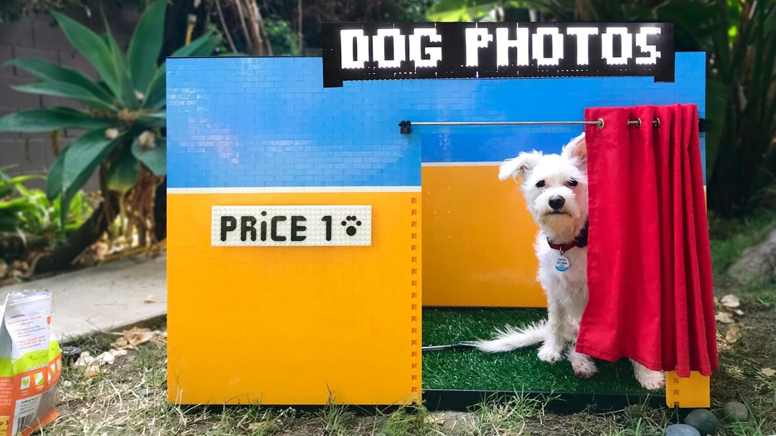 Simone Giertz Dog Selfie Booth