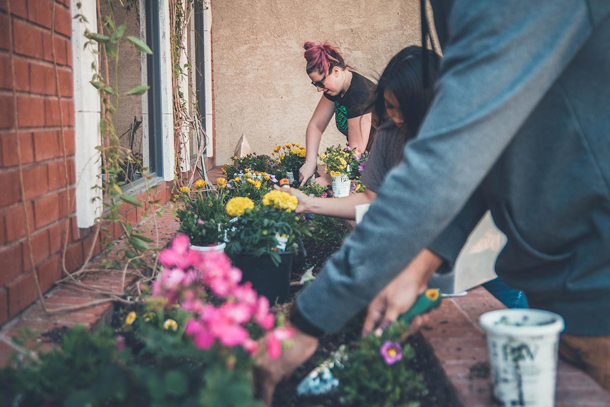 How To Easily Find Everything You Need For Your Garden