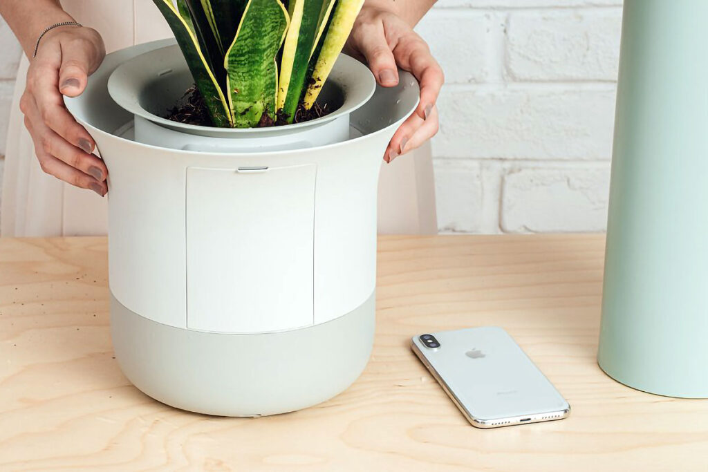 Wázai 2.0 World's Smartest Bonsai Kickstarter