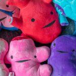 Cute Plush Organs: Human Organs Never Looked This Cute And Huggable