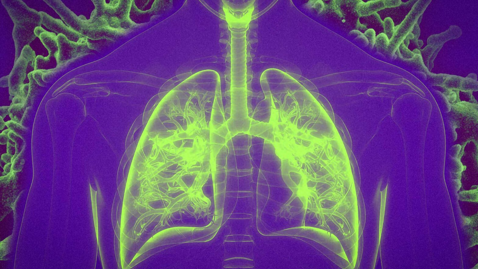 MIT Researchers Study Vaccination by Inhalation