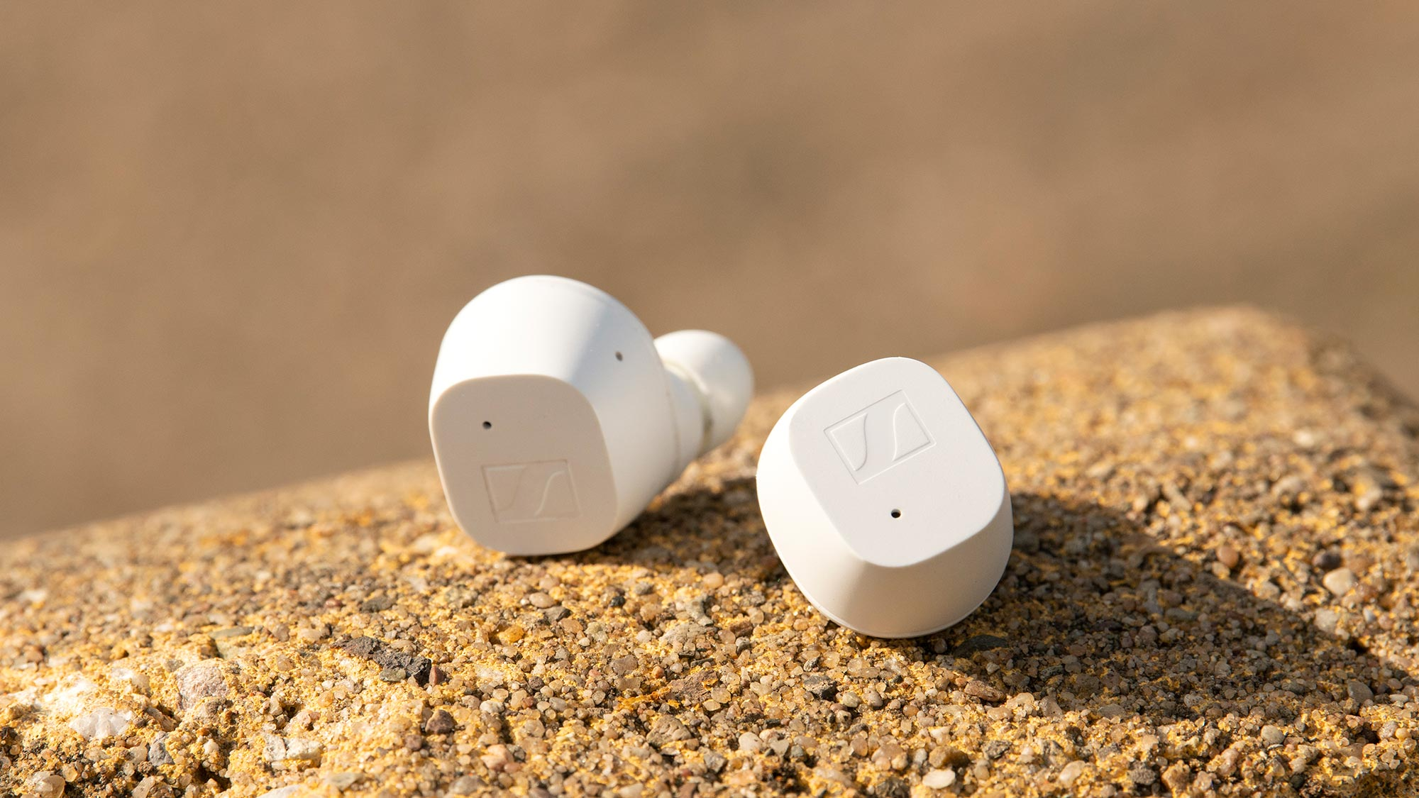Sennheiser CX True Wireless Earbuds Revealed