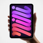 2021 Apple iPad mini and Apple iPad: Two Most Important Apple Tablets Get Updated